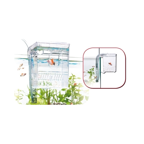 PONDOIR EXTERNE 0.7L fish hatchery WAVE