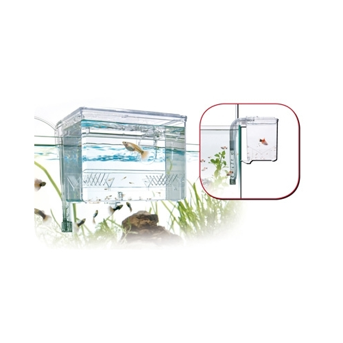 PONDOIR EXTERNE 1.2L fish hatchery WAVE