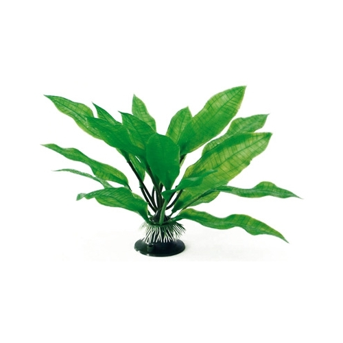 PLANTE ECHINODORUS 18cm