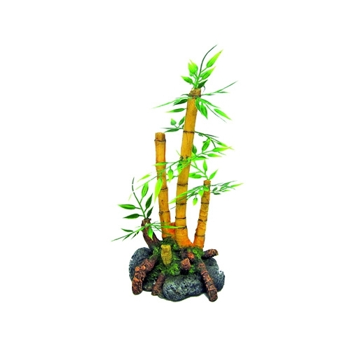 JAPAN BAMBOO PLANT 9x8x18,5cm