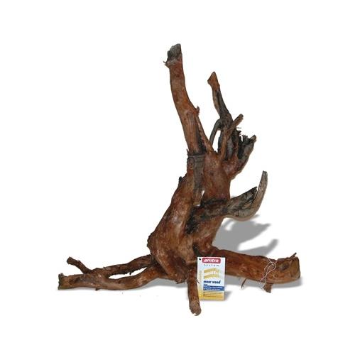 RACINE MOORWOOD 35cm 1p