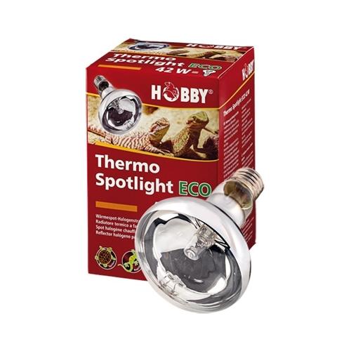 AMPOULE THERMO SPOTLIGHT ECO halogène 42W  HOBBY