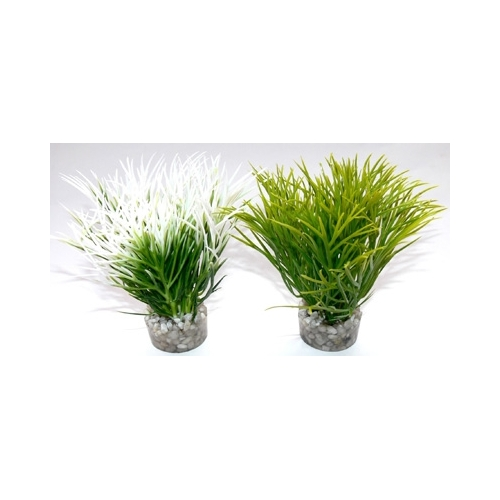 AQUATIC GRASS H:10cm