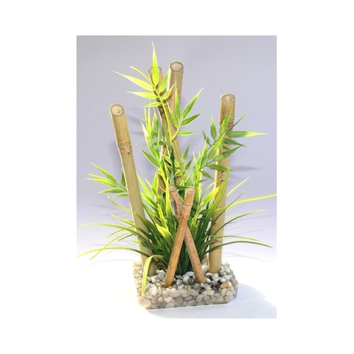 BAMBOO LARGE PLANTS H:25cm