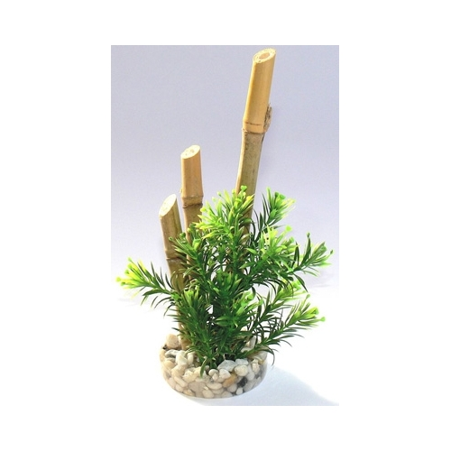 BAMBOO FOREST PLANTS H:20cm