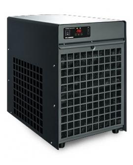 T143146