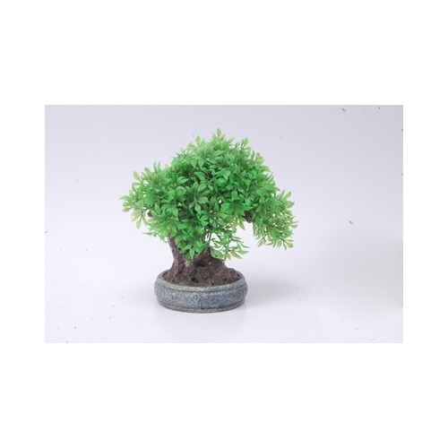 BONSAI TREE      170x100x160mm