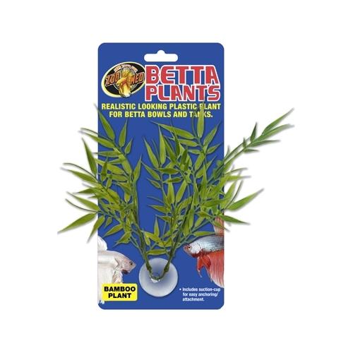 Betta Plant Bamboo ZOOMED