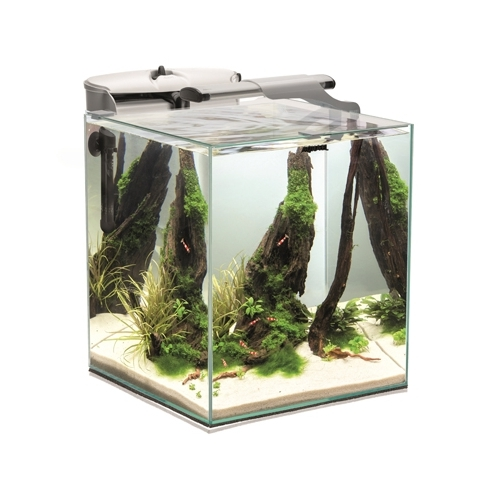 AQUARIUM FISH & SHRIMP SET DUO 35 BLANC  49L