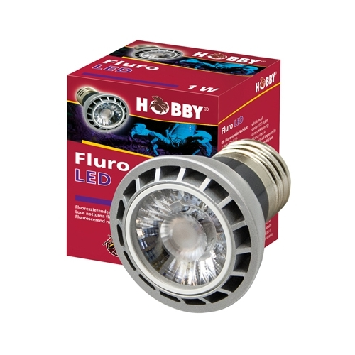 AMPOULE FLURO LED 1W  HOBBY