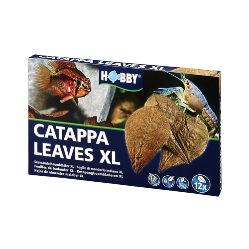 CATAPPA LEAVES XL HOBBY