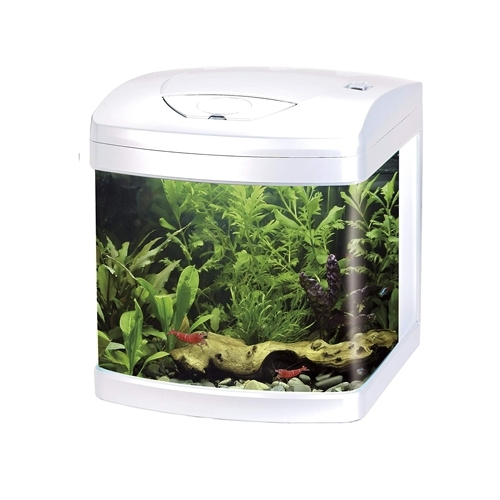AQUARIUM XCUBE 26 LED BLANC équipé AMTRA