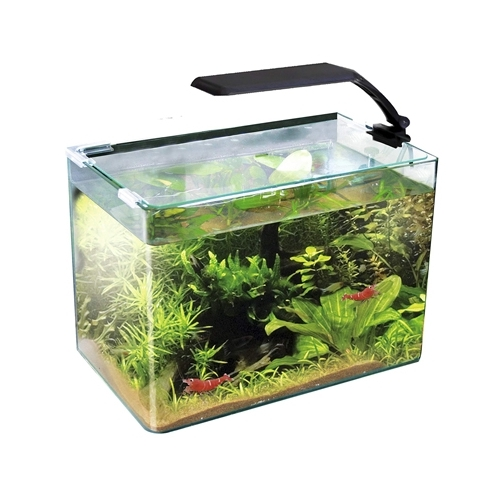AQUARIUM BOX 30 ORION LED 4.2w