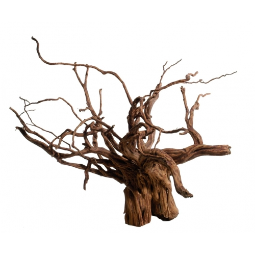 Red Moorwood mini 10-20cm pc
